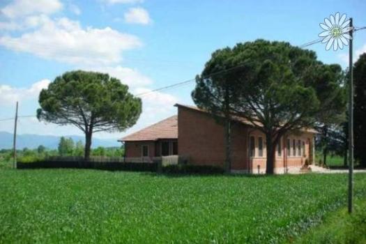 realmente-realestate-ar9066-bijzonder-pand-valdichiana-toscana-italia-3