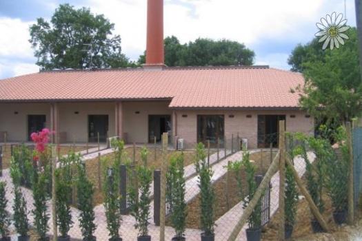 realmente-realestate-cdl2023-appartement-castiglione-del-lago-umbria-italia-9