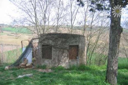 realmente-realestate-cdl3315-geschakelde-woning-castiglione-del-lago-umbria-italia-4