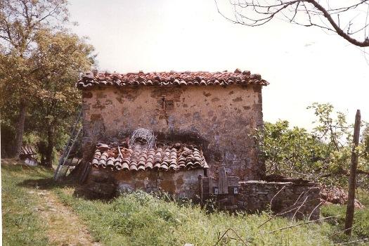realmente-realestate-rr066-vrijstaand-huis-santa-fiora-toscana-italia-12
