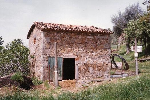 realmente-realestate-rr066-vrijstaand-huis-santa-fiora-toscana-italia-6