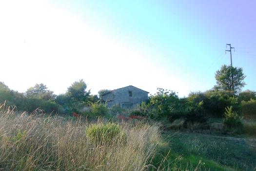 realmente-realestate-rr070-vrijstaand-huis-castell-azzara-toscana-italia-2