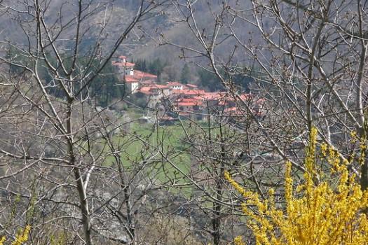 realmente-realestate-rr087-villa-pratovecchio-toscana-italia-5