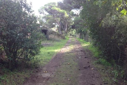 realmente-realestate-rr154-villa-santa-caterina-di-nardo-lecce-puglia-italia-4