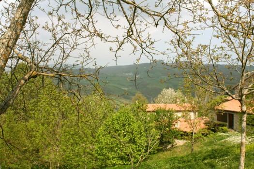 realmente-realestate-rr230-vrijstaande-woning-sestino-arezzo-toscana-italia-10