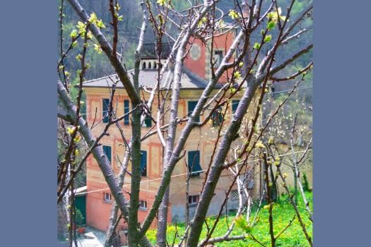realmente-realestate-rr207-villa-favale-di-malvaro-liguria-italia-12