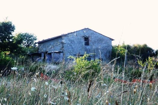 realmente-realestate-rr070-vrijstaand-huis-castell-azzara-toscana-italia-1